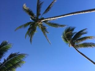Karibien i ett nötskal