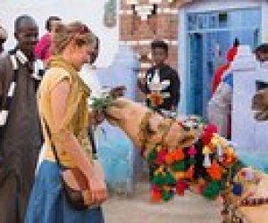 10% sparen Nubian Village Excursion from Aswan – Assuan