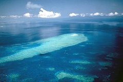 Great Barrier Reef Scenic Flight from Cairns Including Green Island, Oyster Reef, and Heart in the Reef