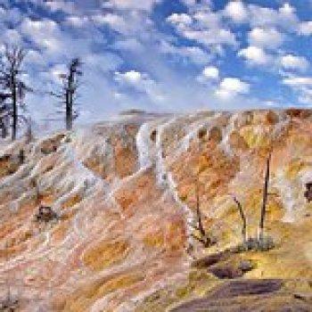Cody Wyoming Yellowstone Upper Loop Tour from Cody Wyoming 35175P1