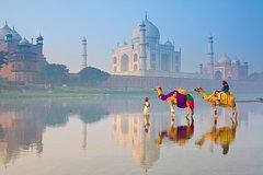 Private Taj Mahal & Agra Full-Day Tour from Delhi by Super-fast Train