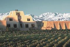 Viva Catena - Argentinian Wine Empire - Gourmet Lunch