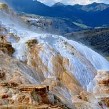 Wyoming Wyoming Take a Day Tour of Yellowstone National Park 128842P4