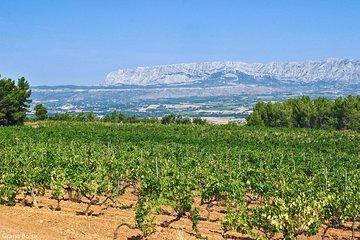 Half day Wine Tour in Côtes de Provence Sainte-Victoire from Aix en Provence
