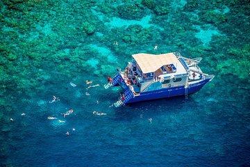 Morning Kealakekua Snorkel Tour