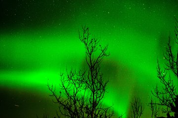4 Nights, 4-Day Northern Lights Vancouver to Whitehorse