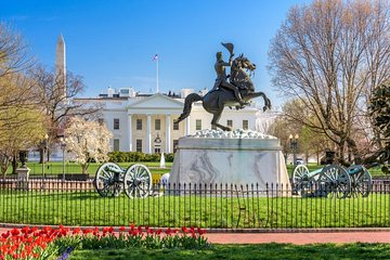 Washington, D.C. Scavenger Hunt: All Things Washington