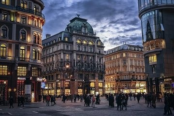 Vienna By Yourself with English Chauffeur - Luxury Car