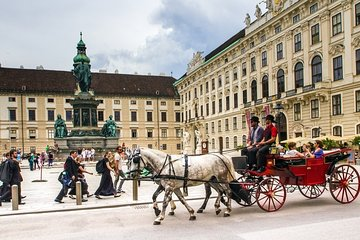 Private cruise ship special full day in Vienna