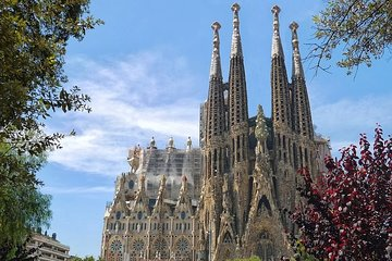 Sagrada Familia Guided Tour including the Towers - Priority Access
