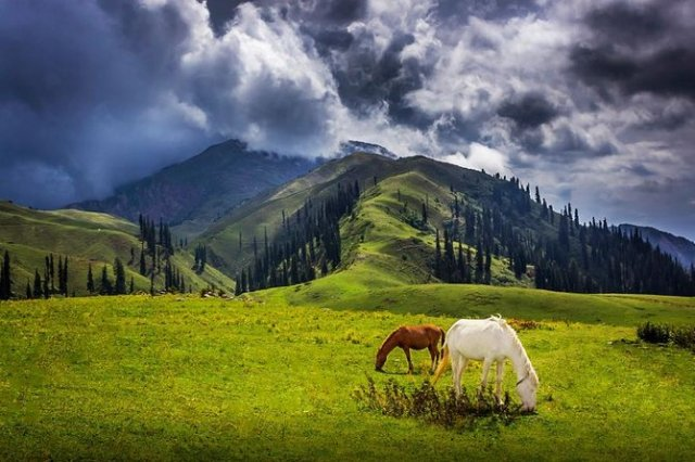 Image result for images of naran kaghan