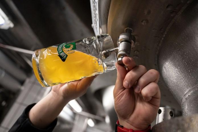 Ein Braumeister der Lammbrauerei Hilsenbeck GmbH & Co KG entnimmt zum Verzehr gedachtes Bier aus einem Tank.
