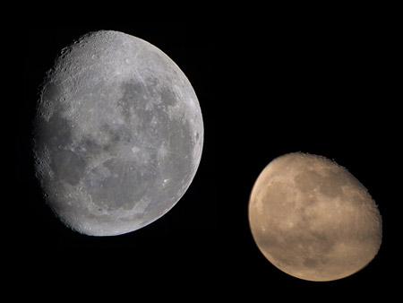 Two Moons 2010 Rumor TechEBlog