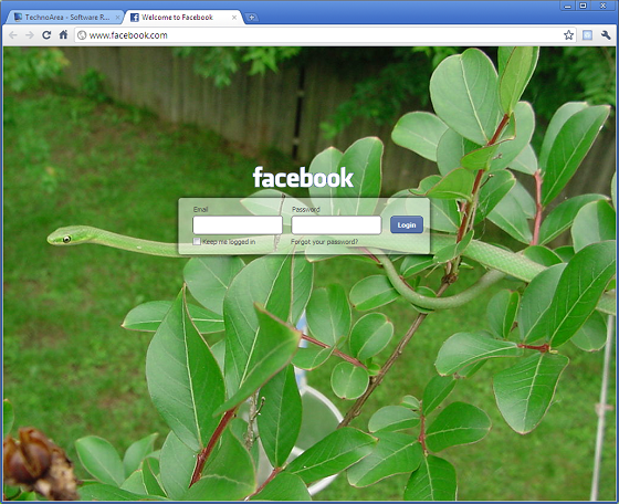 Custom_Facebook_Login_Page