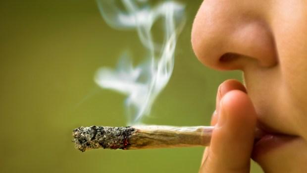 Ancianos tenían 27 kilos de marihuana para regalos navideños