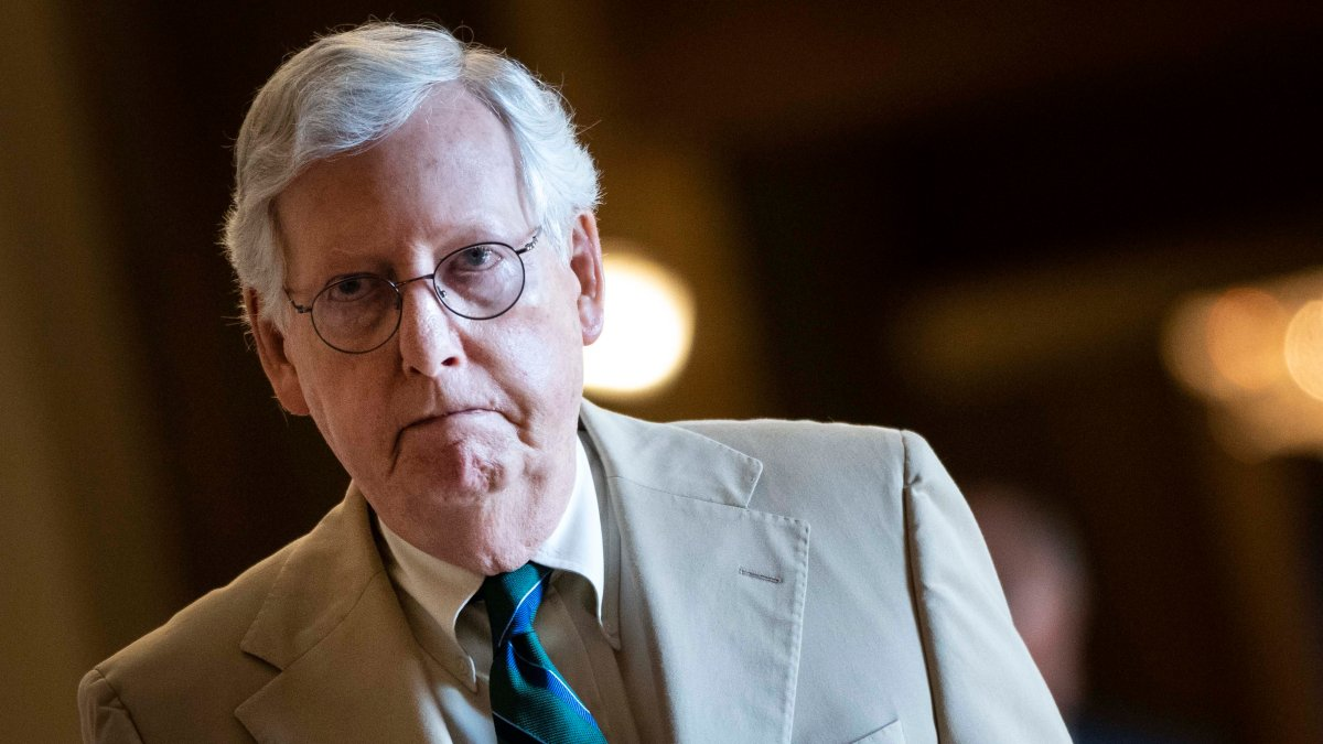 Senate Republicans plan to block Electoral reform plan