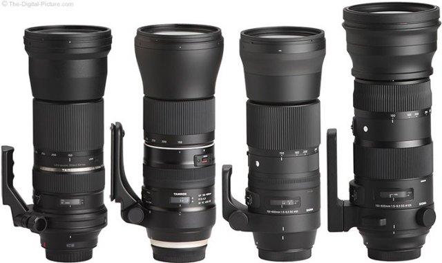 Which 150-600mm Lens Should I Get?