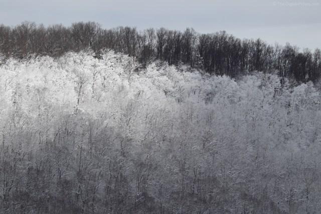 Reverse Snow Line