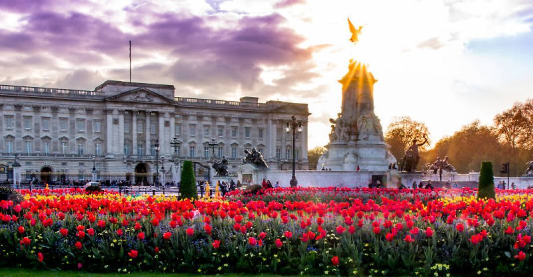 london flowers buckingham palace timeout