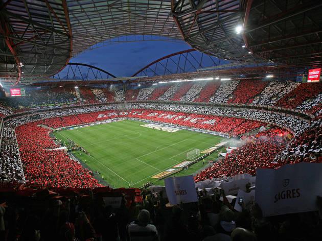 Benfica Stadium Sport And Fitness In Sete RiosPraa De Espanha Lisbon