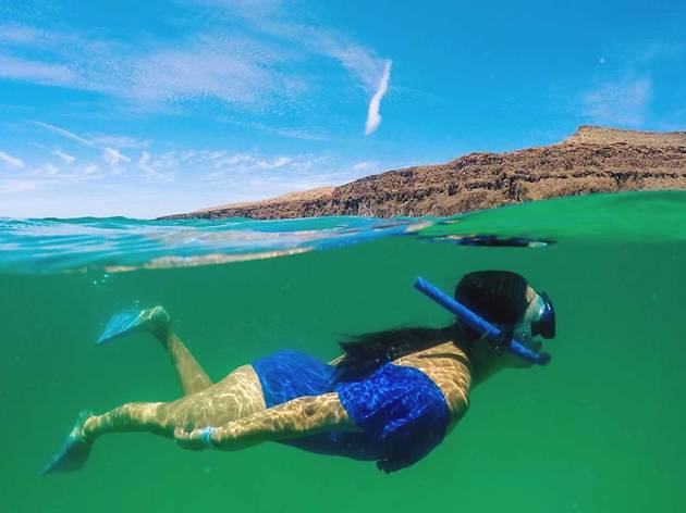 Cabo Snorkel & Sea Adventure, eitw