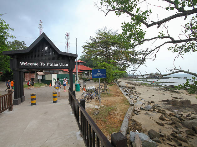 Image result for pulau ubin