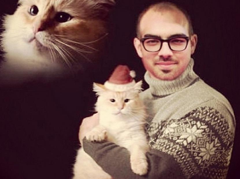 Joe Jonas Goes Bald For Awkward Christmas Photo