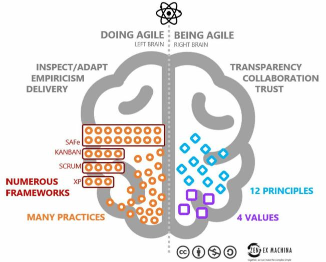 doing Agile, being Agile, brain, practice, inspect, adapt, culture
