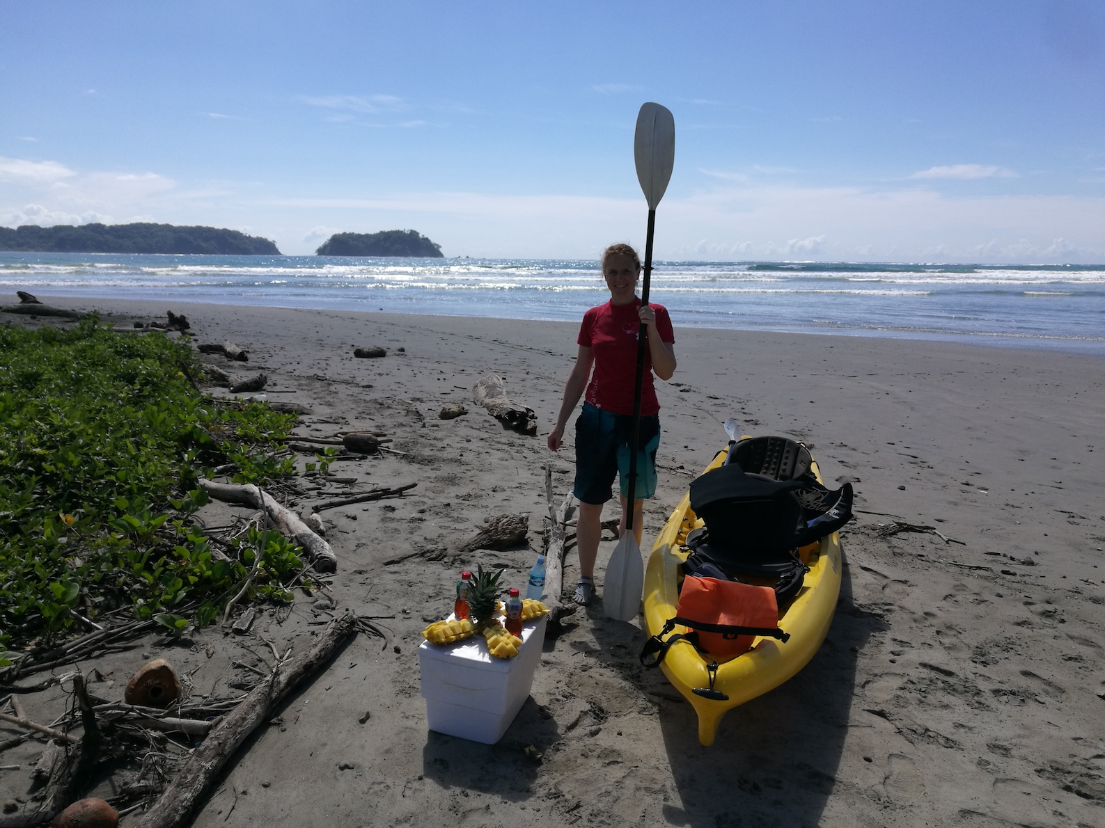 Surfing Kayak Amp Wildlife Observation
