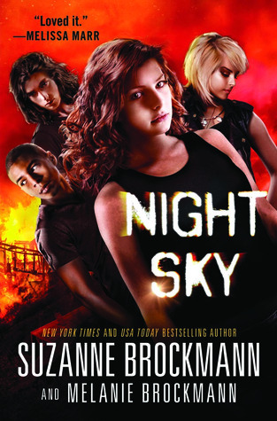 Night Sky by Suzanne Brockmann & Melanie Brockmann