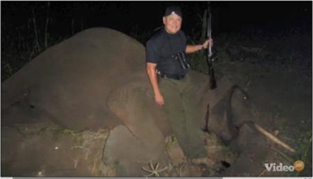 bob parsons kills elephant