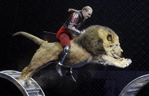 riding a lion