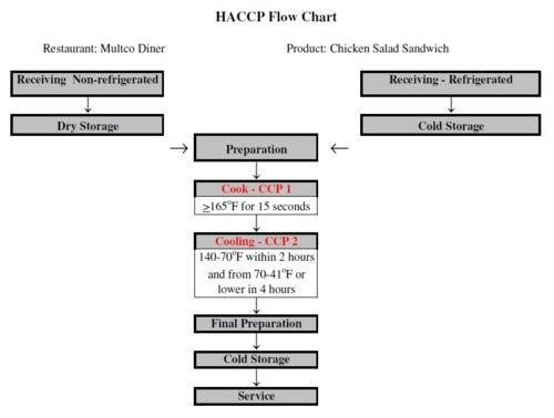 HACCP The Flow Chart 7