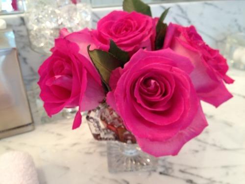 Lynette S Blog The Daily Dream