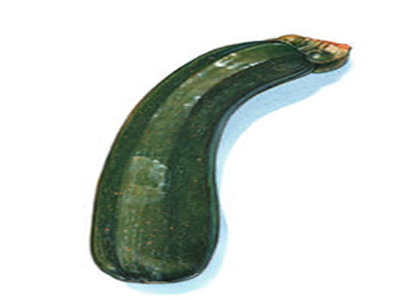 Low carb vegetables 6