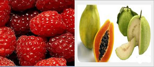 fruits are low in carbs