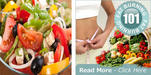 low carb low fat diet plan