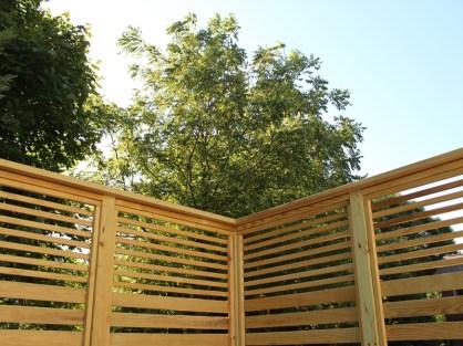Shade tree behind trellis