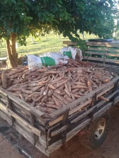 <p>Los vecinos recibieron la ayuda del productor sin ningún costo.</p>