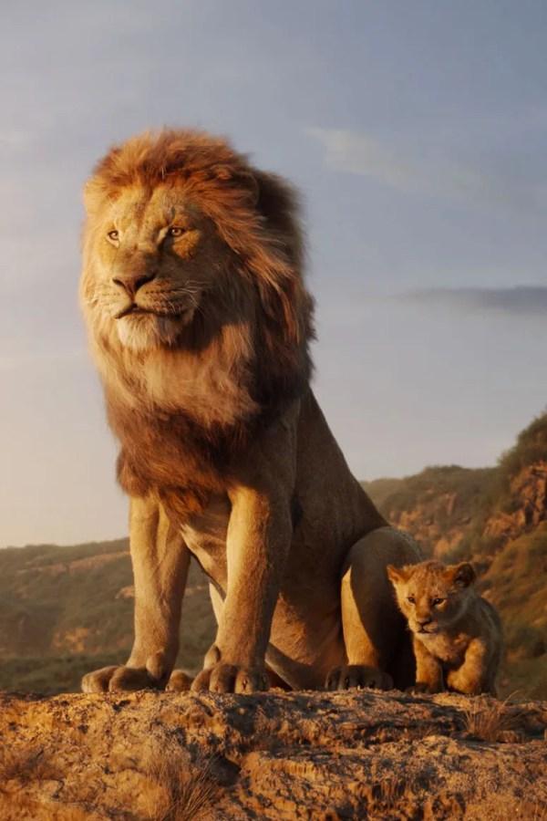 lion king # 6