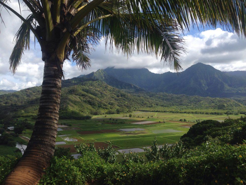 Hawaii-öar, öar i Hawaii, ö i Hawaii