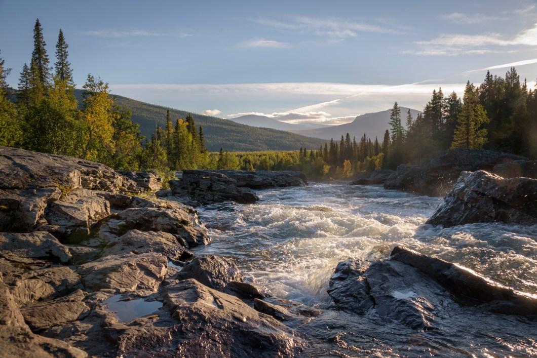 vackraste skogarna i världen, skogar i Sverige, resa i Sverige