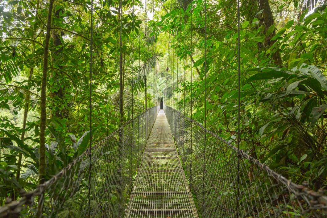 vackraste skogarna i världen, skogar i Costa Rica, resa till Costa Rica