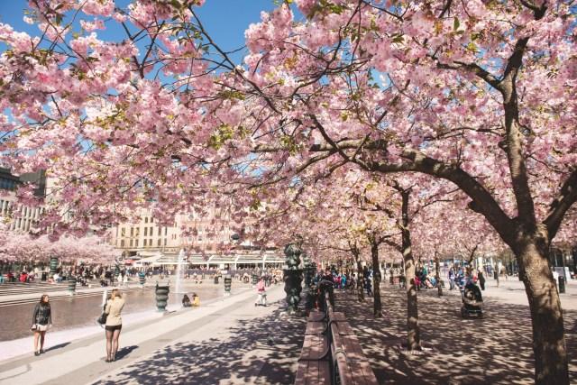 Primavera na Europa