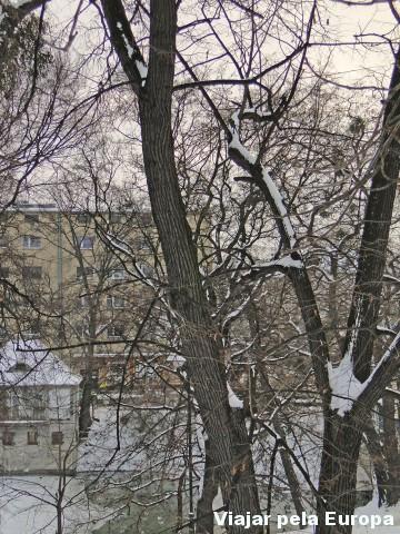 É possível apreciar o pôr do sol entre os galhos das árvores, mas não tinha sol :S