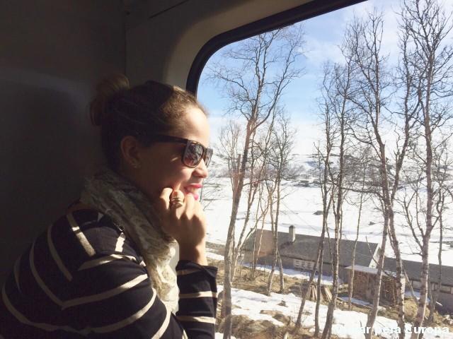 Encantada com a paisagem da viagem de trem de Oslo para Bergen. <3 Noruega!