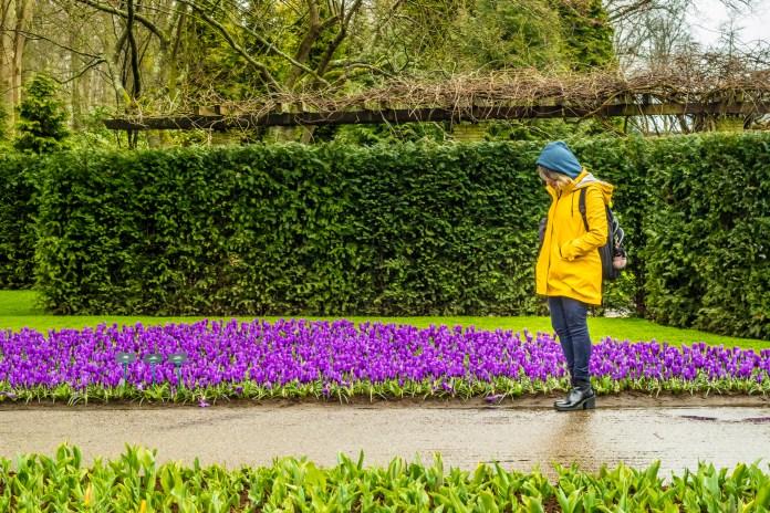 Parque das flores na Holanda