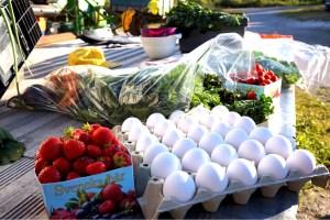 Rörbrakets kravodlade grönsaker - självplock av grönsaker och jordgubbar i Örebro