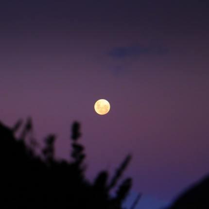 Luna fragola di giugno