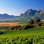 Review: Franschhoek Uncorked